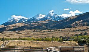 Montana Realty